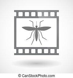 35mm film, moszkitó, elszigetelt, keret, csúszás, photogram