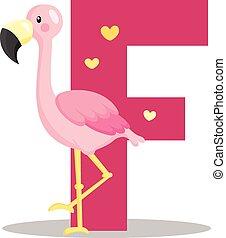abc, flamingó, f