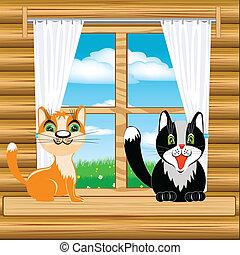 ablak, korbácsok