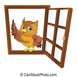ablak, madár