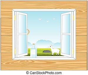 ablak, szoba