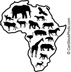 afrika, állat