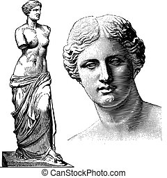 afrodité, vektor, szobor