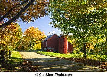 afternoon., ország, ősz, istálló
