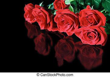 agancsrózsák, gáncsolt, piros