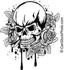 agancsrózsák, koponya