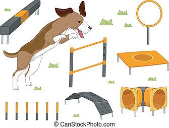 agilitás, kifogásol, kutya