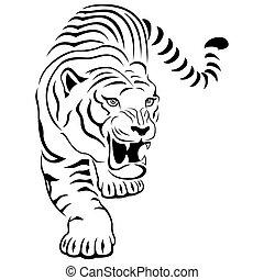 agresszív, tiger, vadászat