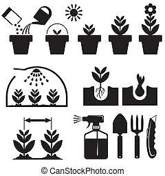 agrotechnics, állhatatos, ikonok