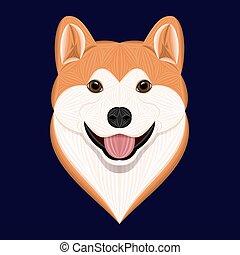 akita, kutya, vektor, karikatúra, ábra