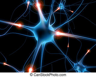 aktivál, neuron