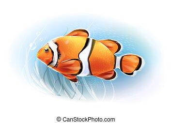 akvárium, world., fish., clownfish, gyönyörű, víz alatti, sea., gyakorlatias, illustration.