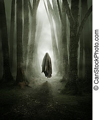 alak, erdő, kísérteties, ködös