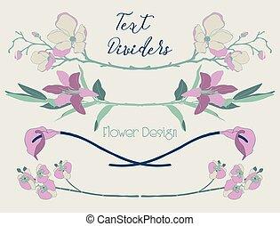 alapismeretek, színes, szöveg, virágos, vektor, tervezés, virág, dividers.