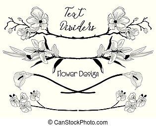 alapismeretek, szöveg, fekete, virágos, vektor, tervezés, virág, dividers.
