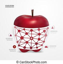 alma, modern, infographic, tervezés, mód, alaprajz, /, sablon, infographics, kapcsoló, minimális, website, lenni, használt, horizontális, számozott, grafikus, megvonalaz, vektor, konzerv, szalagcímek, vagy, pont