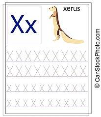 alphabet., gyerekek, kézírás, tanul, angol, worksheet, irodalomtudomány, training., xerus.
