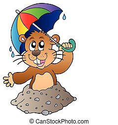 amerikai mormota, esernyő, karikatúra