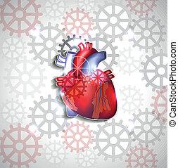 anatómia, szív, elvont, fogaskerék-áttétel, háttér