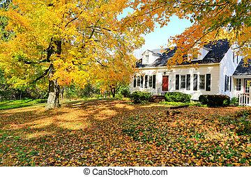 anglia, klasszikus, épület, amerikai, fall., külső, új, közben