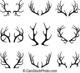 antlers, fehér, vektor, őz, elszigetelt