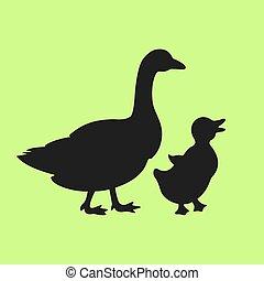 anya, karikatúra, árnykép, madár, vektor, kicsi, csecsemő, liba