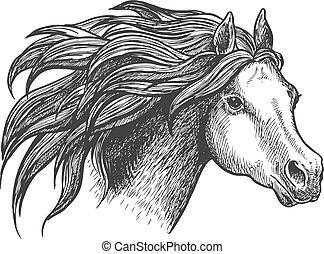 appaloosa, futás, elegáns, szüret, ló, ikon