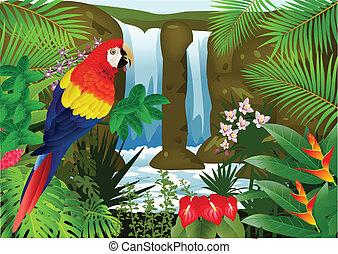 ara papagáj, madár, backgroun, vízesés