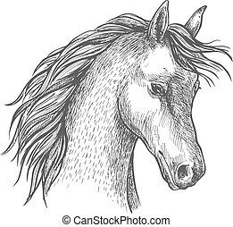 arab, fej, ló, jelkép, skicc