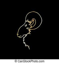 arany-, fej, vektor, árnykép, döngöl, skicc, ábra, kéz, profile., rajz, goat