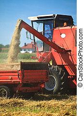 aratás, traktor, búza, kartell