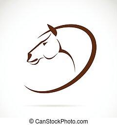 arcmás, ló, vektor, tervezés