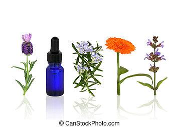 aromatherapy, menstruáció, füvek
