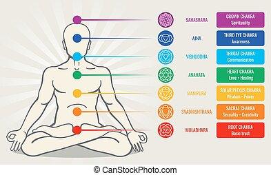 asana, szeret, vektor, emberi, energia, ayurveda, chakra, rendszer, ábra