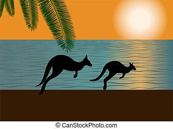 ausztrál, lesiklik