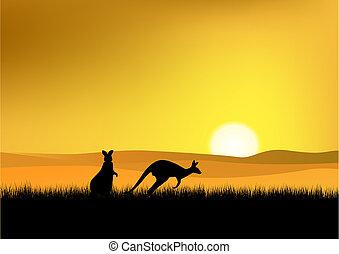 ausztrália, napnyugta