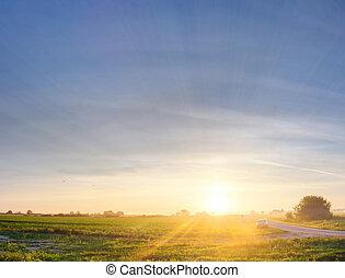 autó, naplemente terep
