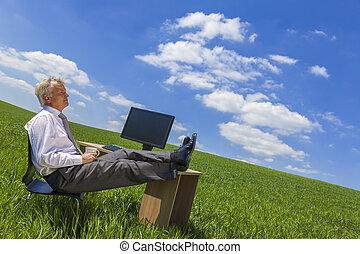 bágyasztó, gondolkodó, mező, zöld asztal, üzletember