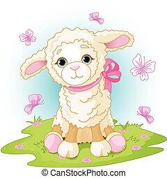 bárány, húsvét