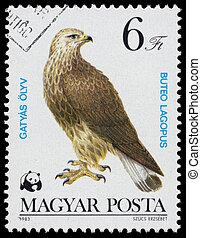 """bélyeg, prey"""", nyomtatott, magyarország, """"bird, látszik"""