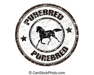 bélyeg, purebred, ló
