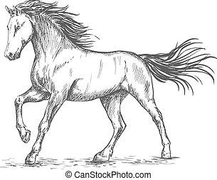 bélyegzés, portré, ló, fehér, skicc