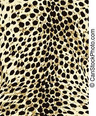 bőr, mód, nyomtat, leopárd, állat