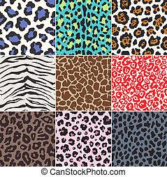 bőr, motívum, szerkezet, seamless, állat