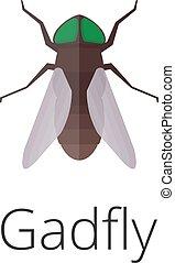 a gadfly parazita