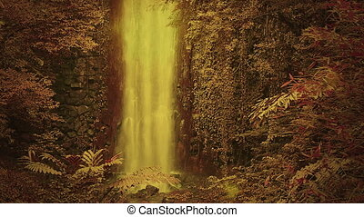 bűbájos, vízesés, erdő