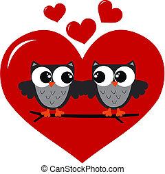 baglyok, szeret, két