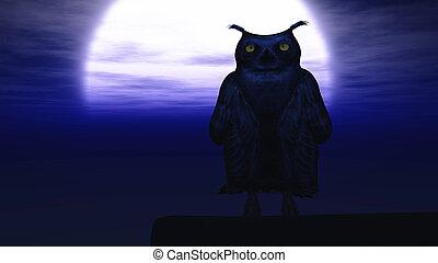 bagoly, éjszaka, vakolás, 3, moonlight.