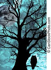 bagoly, ősi, fa, éjszaka, sügér, holdvilágos
