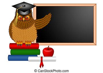 bagoly, egyetemi tanár, bölcs, ábra